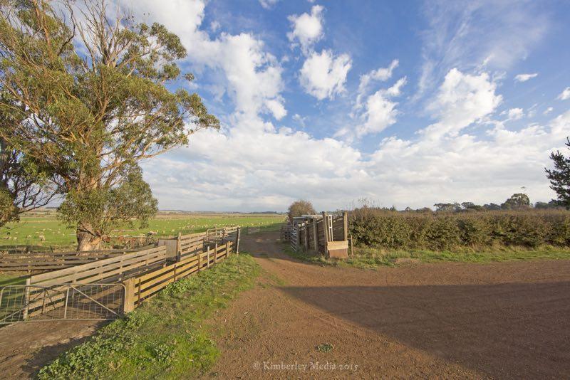 View over the sheep paddocks at Brickendon, Longford, Tasmania.
